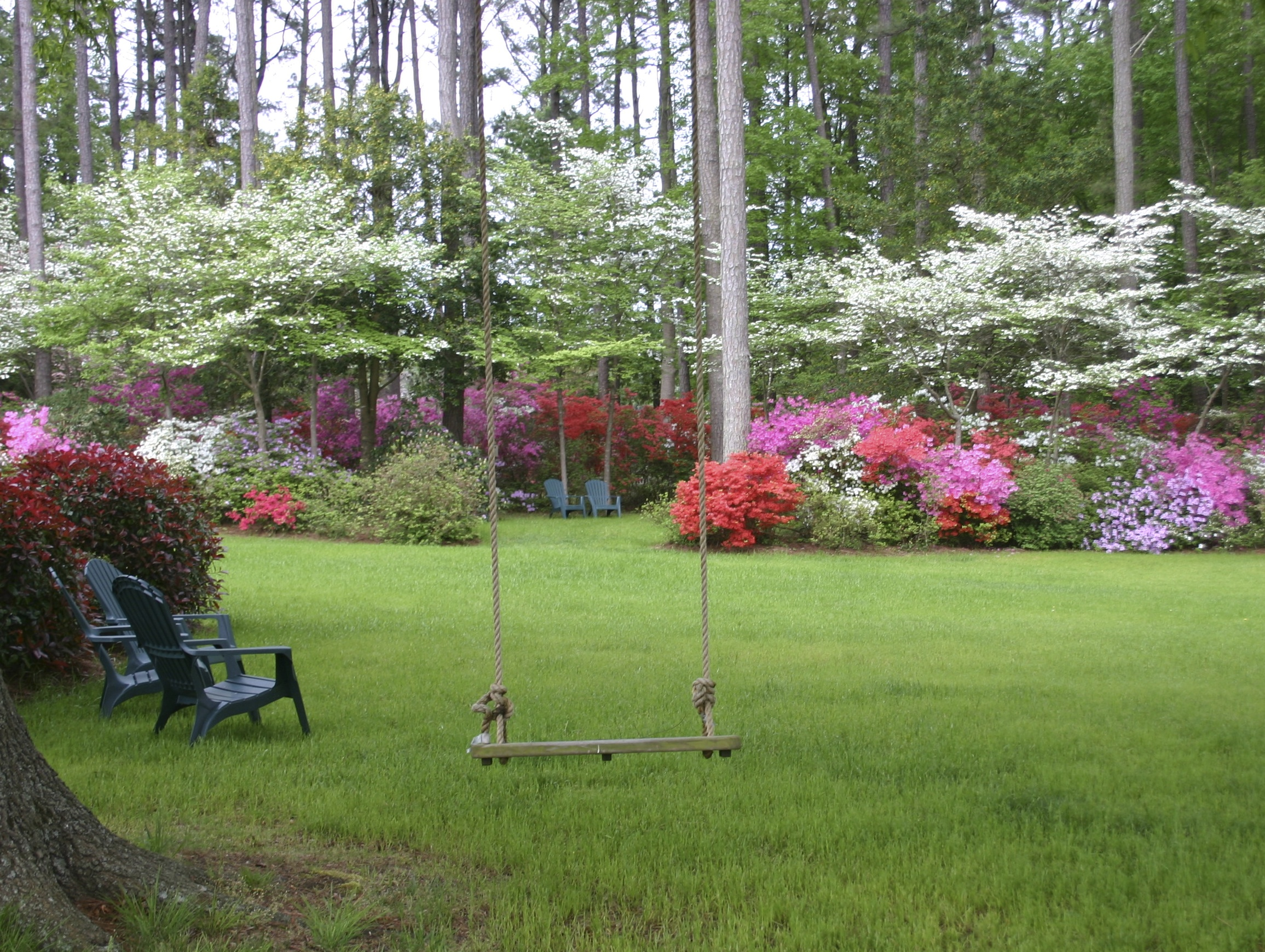 The azalea gardens of art and betty white gloucester va for Landscape gardeners