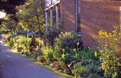The alley garden