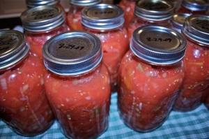 stewed tomatoes: 8/29/09
