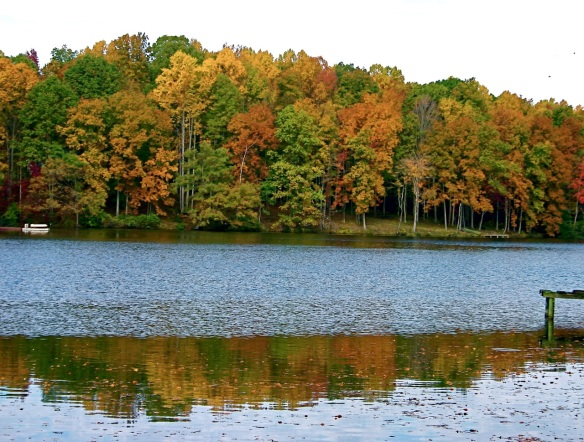Fall comes to Cow Creek in Gloucester