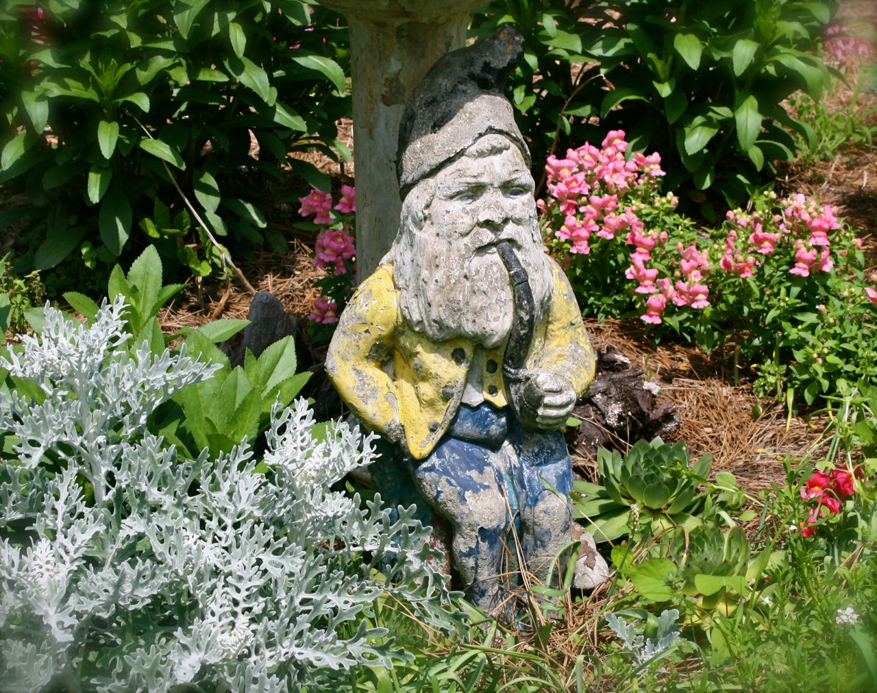 Gnome In Garden: Breaking New Ground In Zone 6