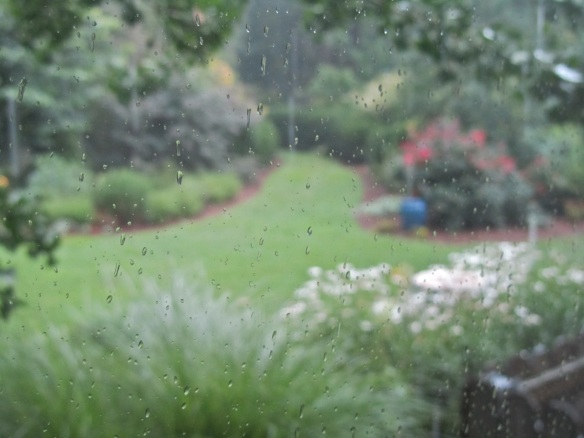 Humidity Breaking New Ground In Zone 6
