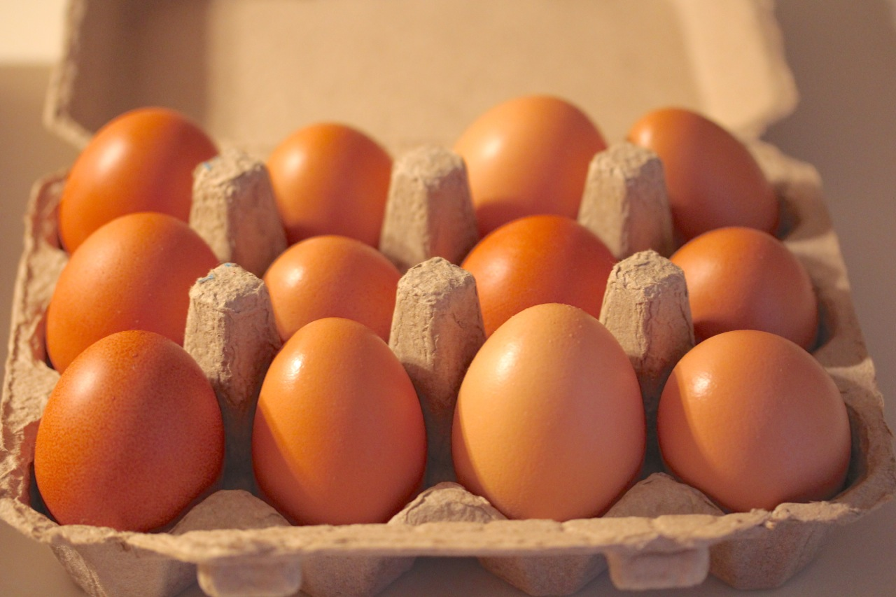 Organic eggs daily