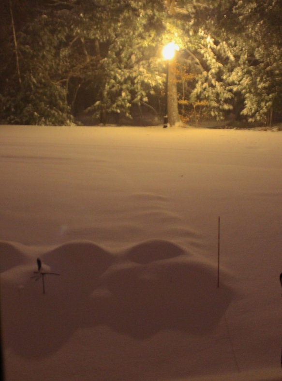 snow 12/14/1013
