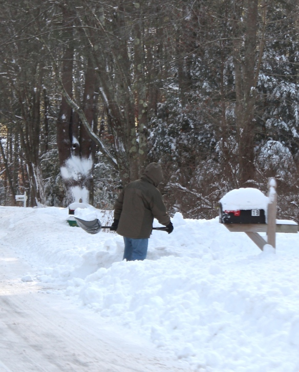 shoveling snow in Exeter