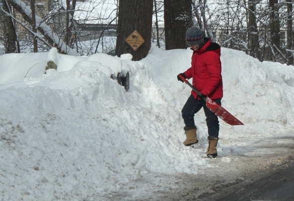 A very common scene around here as folks shovel out their mailboxes.