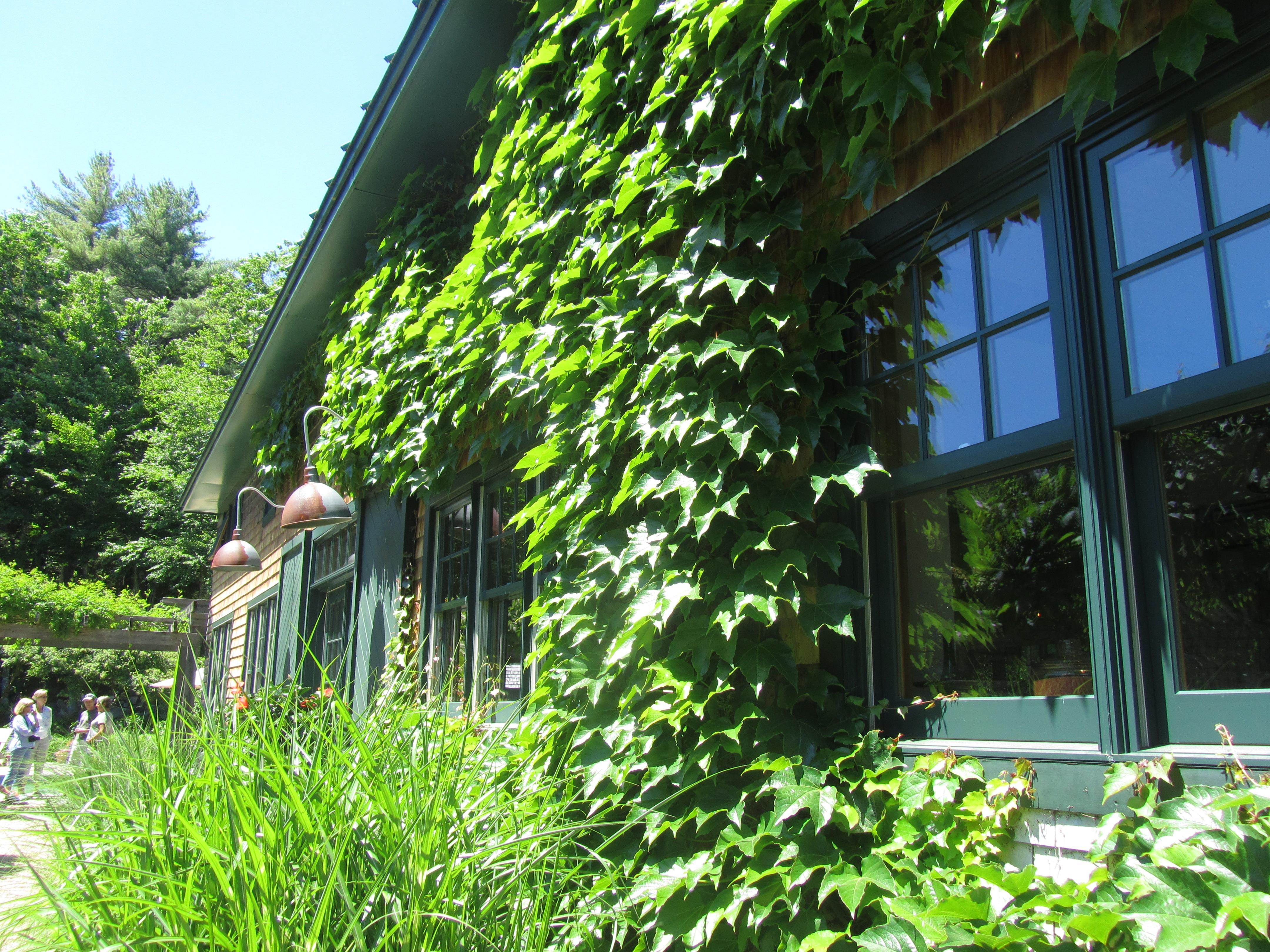 Garden Conservancy Open Days Long Island