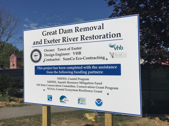 Great Dam Removal