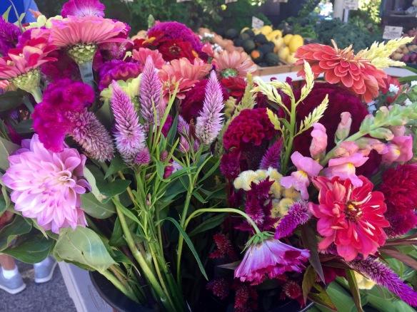 Exeter Farmers' Market 9/29/16