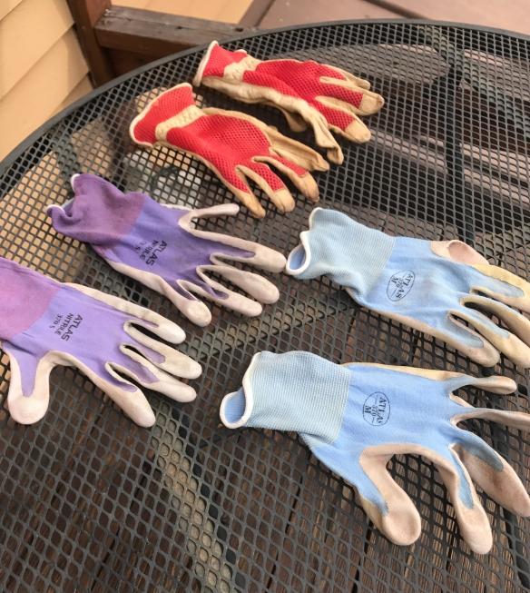 garden gloves 2017