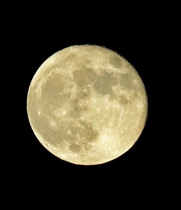 moon 1:2018