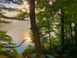 Thompson Lake 2018