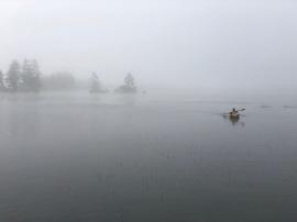 foggy paddle 2018