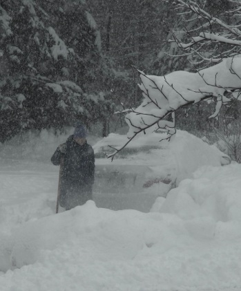 Cindy - Snowstorm Dec. 3, 2019